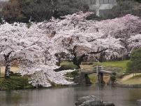 Koishikawa-kôrakuen